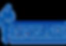NYSAIS-blue-2.png