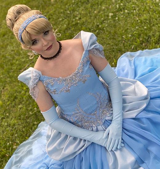 Cinderella Parks Inspired Wig