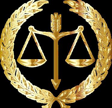 direito sistemico.png