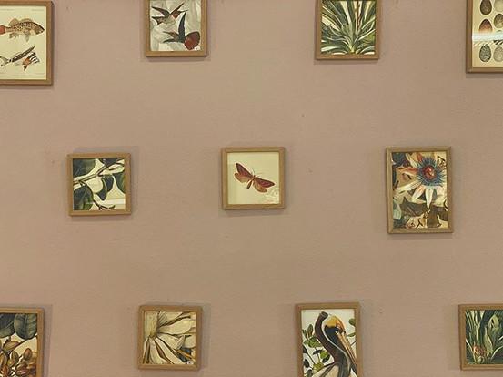 Bildermix auf Wandfarbe von Pure & Original