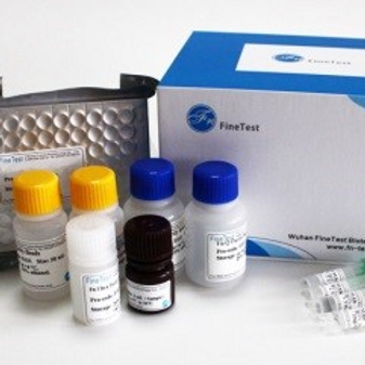 Mouse IL-10( Interleukin-10) ELISA Kit