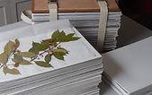 Herbarium Supply.jpg