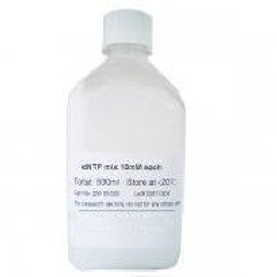 dNTP Mixture each 2.5mM solution [bulk package:500ml]