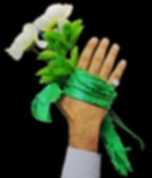 Hand of SHia