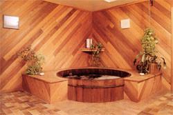 Walker Hot Tub Room.jpg