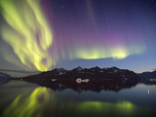 The Best Way to See Polar Bears & Northern Lights in One Shot