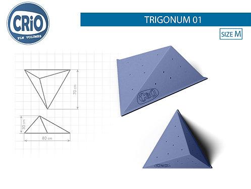 TRIGONUM 01
