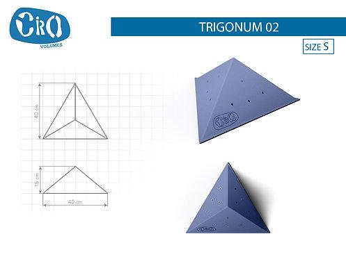 Накладной рельеф для скалолазания CRIO HOLDS TRIGONUM 02