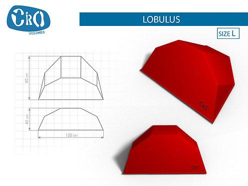 Накладной каркасный рельеф для скалолазания CRIO HOLDS LOBULUS