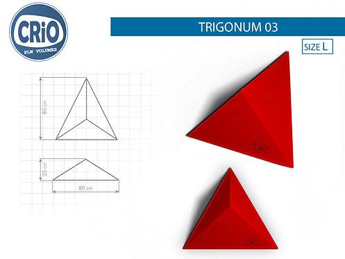 TRIGONUM 03