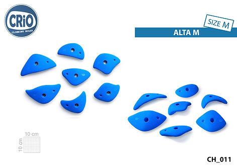 Набор зацепов для скалолазания CRIO HOLDS ALTA M