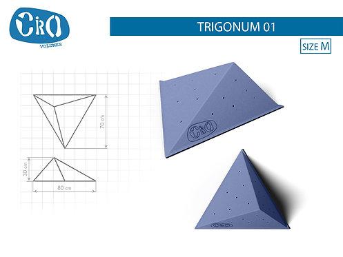 Накладной рельеф для скалолазания CRIO HOLDS TRIGONUM 01