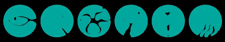 ecosystem website icons