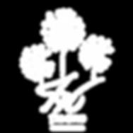 לוגו טוף מרום גולן