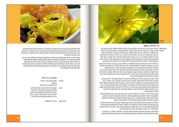 Book_PDF_4Pirsoom_R013.png