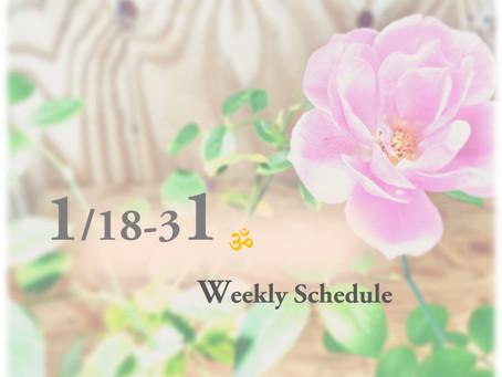 週間スケジュール**1/18-31