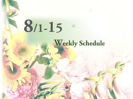 週間スケジュール**8/1-15