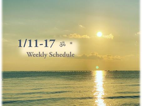 週間スケジュール**1/11-17