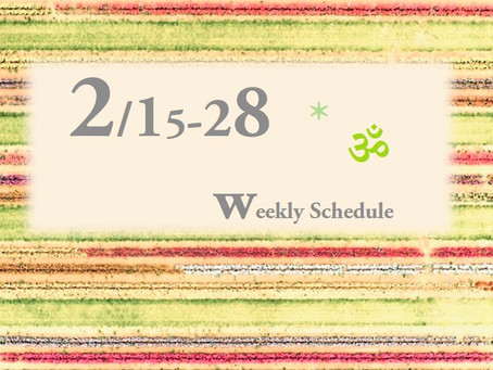 週間スケジュール**2/15-28