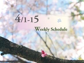 週間スケジュール**4/1-15