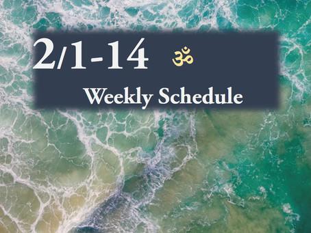 週間スケジュール**2/1-14