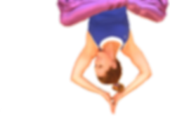 Kim Inverted Yogi.png