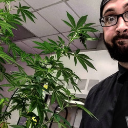 UF Research Grow