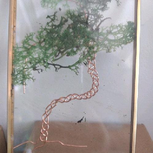 hanging terrarium planted