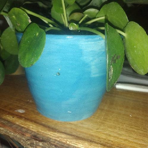 small blue LGC