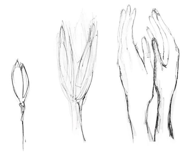 pousse mains.jpg