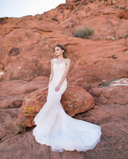 Illusion Lace Trumpet Mermaid Gown
