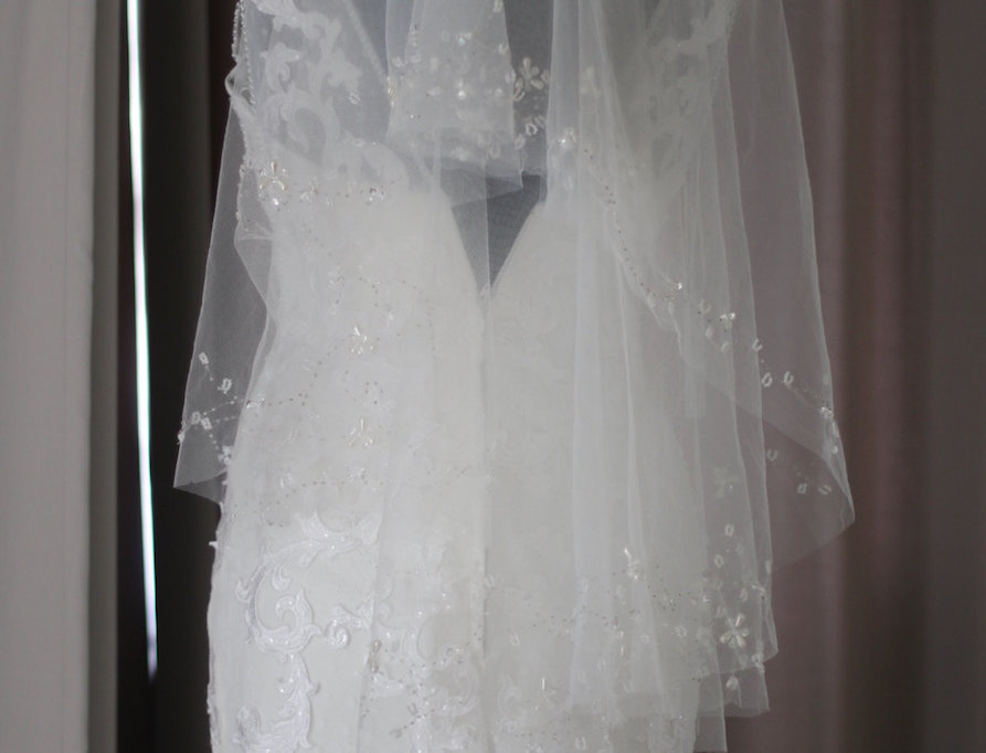 Short Veil with Beading Detail