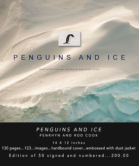 Penguins and Ice Book web.jpg