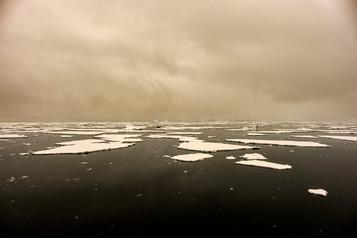Ice Flow in Wilhelmina Bay
