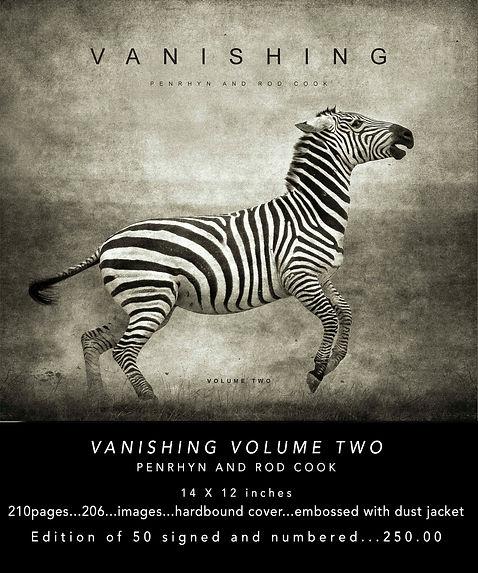 VANISHINF VOL. 2 WEB.jpg