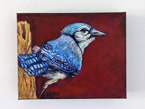 Blue Jay Attitude painting by Judy Trafford