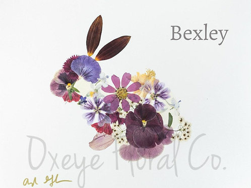 Bexley Bunny 8x10 Print by Oxeye Floral Co.