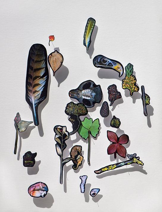 10 Habitat pinned prints installation ma