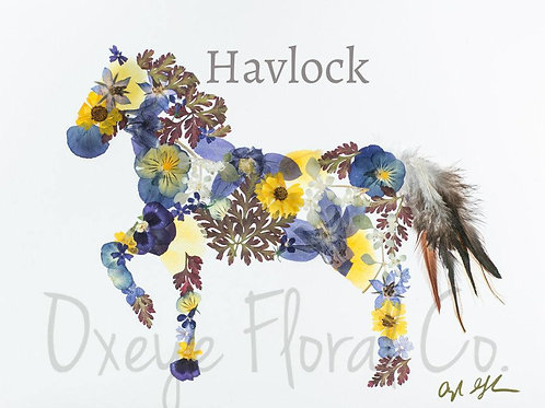 Floral Horse 8x10 Print by Oxeye Floral Co.
