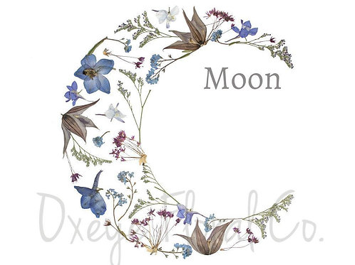 Moon 8x10 Print by Oxeye Floral Co.