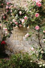 Pépinière jardinerie.jpg