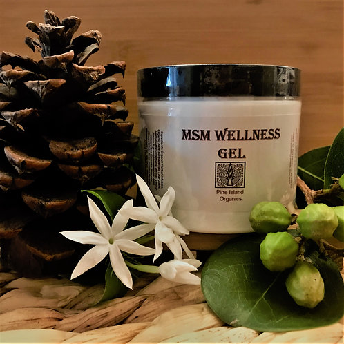 MSM WELLNESS GEL