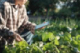 Organic Farming Institute