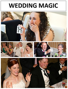 WeddingCollage.PNG