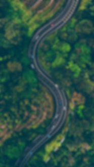 aerial-view-of-road-in-the-middle-of-tre