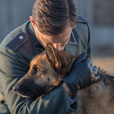 Shepherd: The Story of a Jewish Dog (2021) Review