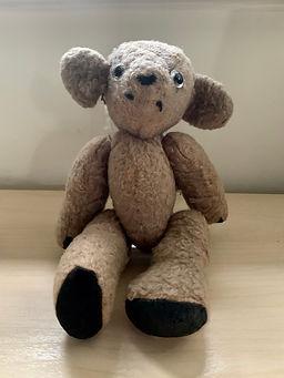 Marty the teddy.JPG