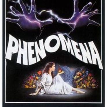 PHENOMENA Drive-in