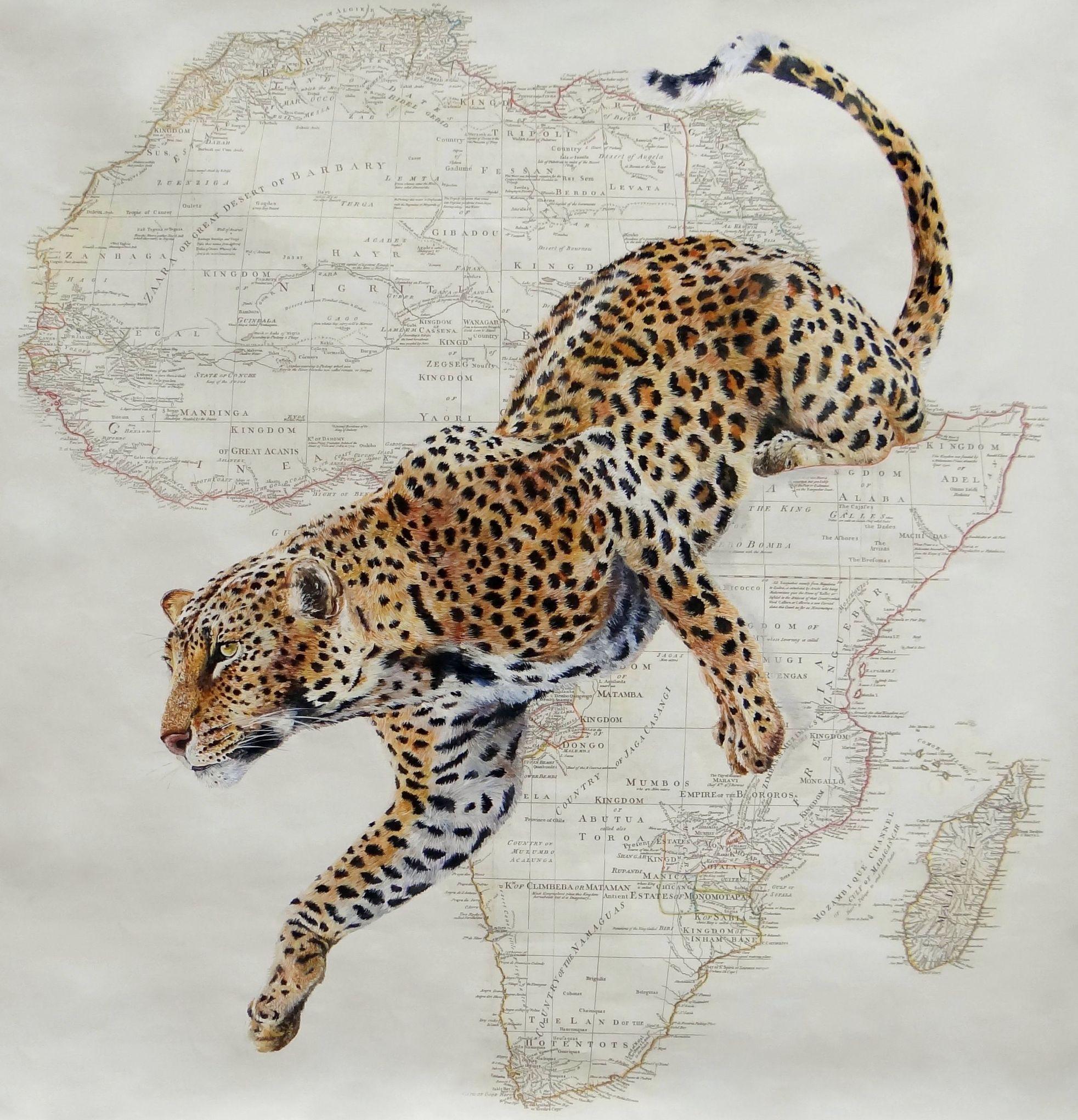 saut d Afrique