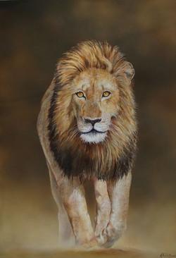 La marche du lion